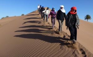 dune 1 (2)