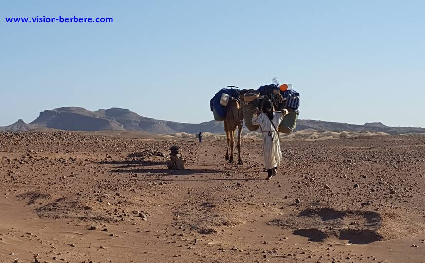La Vallée du Drâa : Dunes, Oasis & Kasbahs